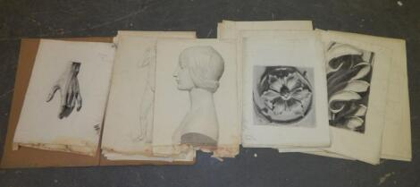A folio of drawings by Lucy Hooton