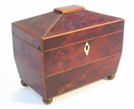 A Regency burr wood sarcophagus tea caddy
