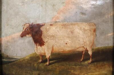 Early 19thC English Naive School. A short horned cow in a field