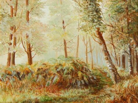 S R Knowles (20thC). Forest Track Early Morning