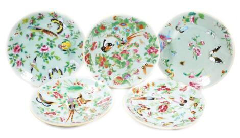 Five similar Chinese celadon plates