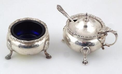 A George V Chester silver two piece cruet set