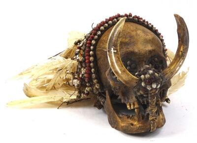 An Asmat tribal skull