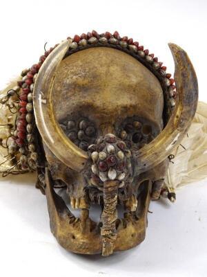 An Asmat tribal skull - 2