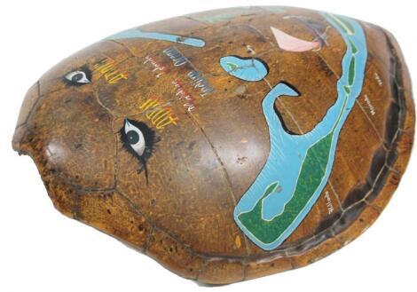 A massive green turtle shell