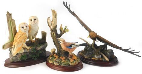 Three Border Fine Arts birds