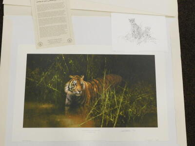 David Shepherd (1931-2017). Into the Sunlight there came a Tiger, artist signed limited edition coloured print, 80/950, 50cm x 78.5cm, and another Cheetah 76/950. - 2