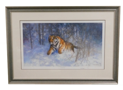 After David Shepherd. Tiger in the Snow, limited edition number 62950, signed in pencil to the border and dated 05, with certificate of authenticity, 37cm x 67cm, framed and glazed. - 2