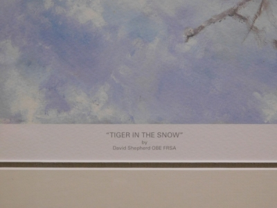 After David Shepherd. Tiger in the Snow, limited edition number 62950, signed in pencil to the border and dated 05, with certificate of authenticity, 37cm x 67cm, framed and glazed. - 3