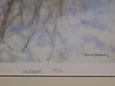After David Shepherd. Tiger in the Snow, limited edition number 62950, signed in pencil to the border and dated 05, with certificate of authenticity, 37cm x 67cm, framed and glazed. - 4