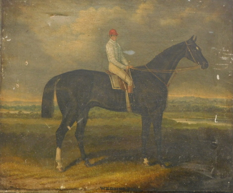 Circle of Samuel Spode. Wedding Peal, racehorse with jockey in white silks, oil on canvas, signed and titled, 52cm x 60cm.