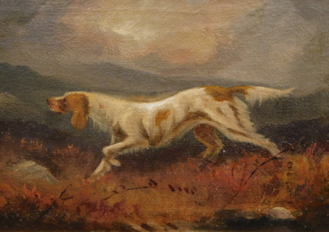 Fannie Moody (1861-1948). Setter in hilltop landscape, oil on canvas, signed, 26cm x 36cm.