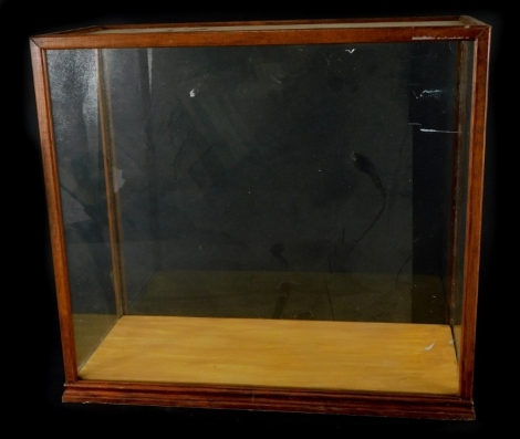 A mahogany and glazed display case, 38cm high, 41cm wide.