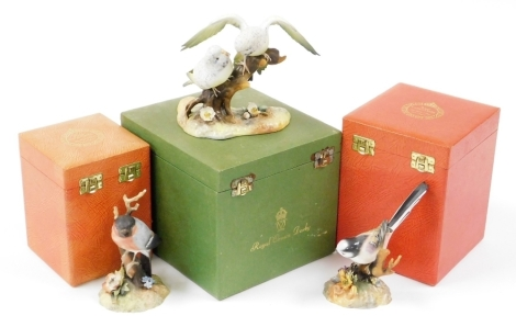 Three boxed Royal Crown Derby bird ornaments, to include Bullfinch, 12cm wide, Long Tailed Tit, 16cm high, and Budgerigars, 13cm high. (3)