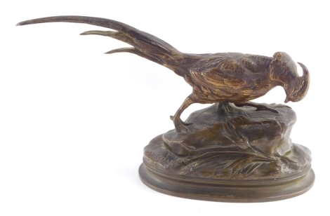After Alphonse-Alexandre Arson (French, 1822-1880). A bronze pheasant, modelled on a naturalistic oval base, bares signature, 31cm wide.